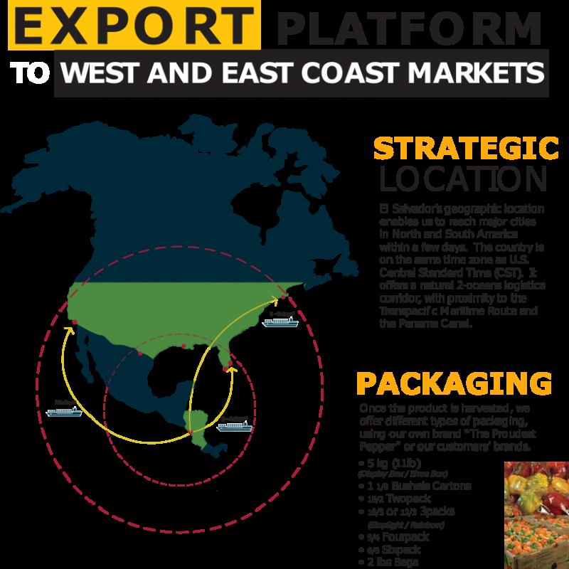 img_export_platform